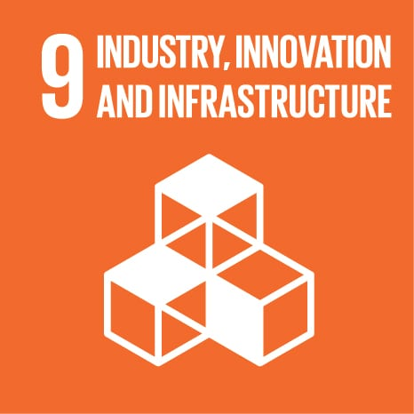 Goal 9: Build resilient infrastructure, promote inclusive and sustainable industrialization and foster innovation