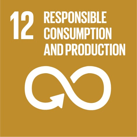 Goal 12: Ensure sustainable consumption and production patterns