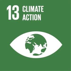 SDGs Icon Goal 13