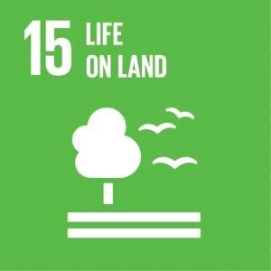 SDGs Icon Goal 15