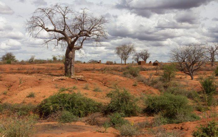 06-16-2016 Desertification