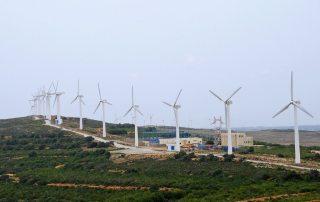 Wind turbine farm in Tunisia. Photo: World Bank/Dana Smillie