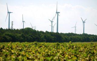 A wind farm near Kavarna, Bulgaria. Photo: Ivelina Taushanova/World Bank.