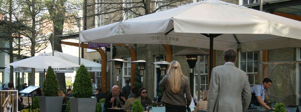 Qué ver en Chelsea terraza manicomio
