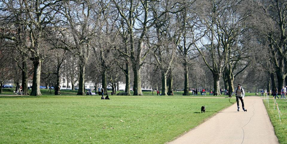 Patinar por Hyde Park árboles