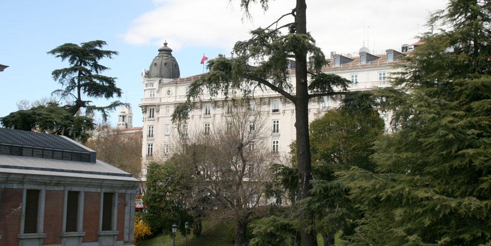 Qué ver por el museo Thyssen Ritz