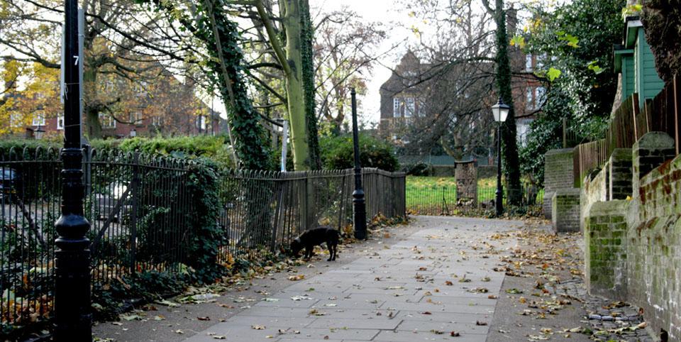 Barrios bonitos de Londres perro