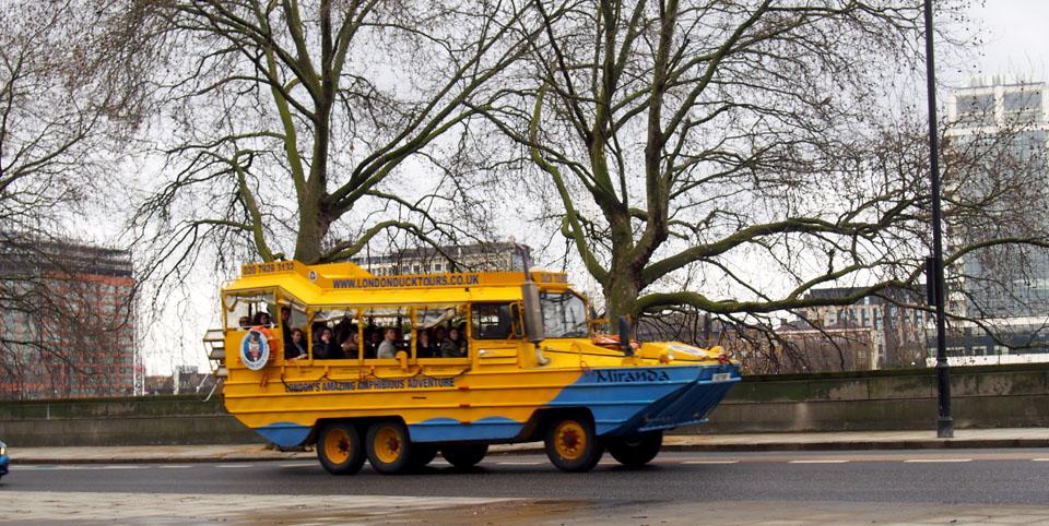 Un híbrido en Pimlico