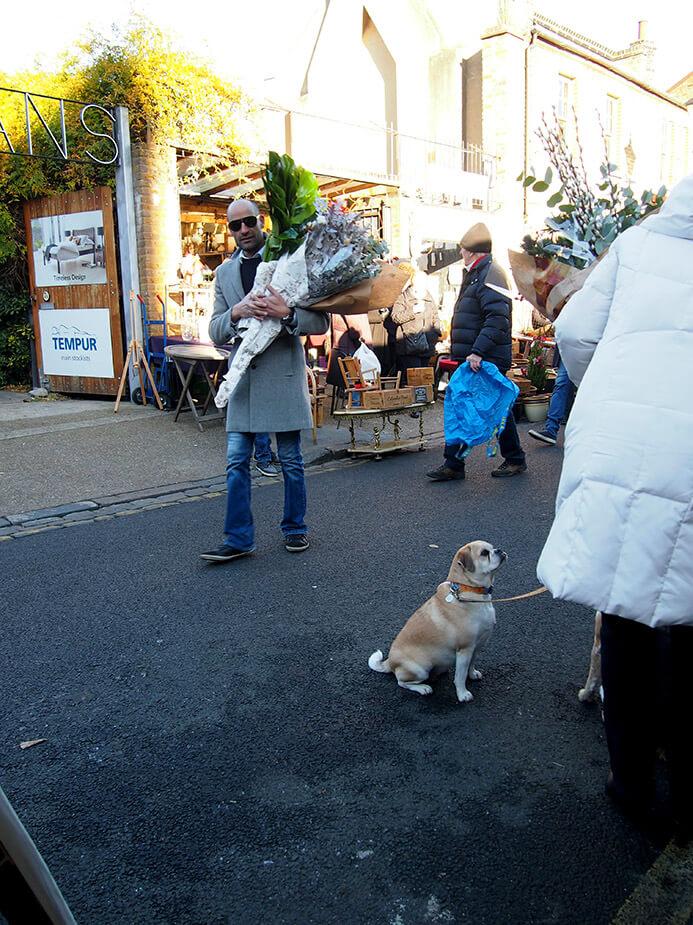 Tiendas en Columbia Road Ezra Street perro