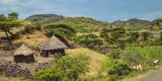 Traditional Hut Near Lalibela