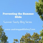 """Preventing the """"Summer Slide"""" while you Keep your Summer Sanity"""