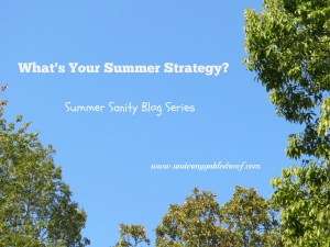 Summer Strategy for Summer Sanity