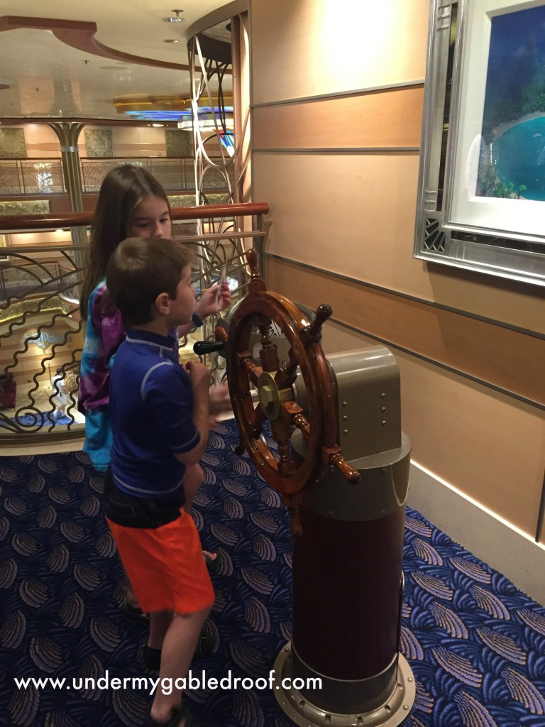 Our overview of a fun family vacation that was a surprise Christmas gift! Come and enjoy our Disney Cruise photos complete with fun Disney characters, warm sandy beaches, yummy deserts and of course, Disney magic!