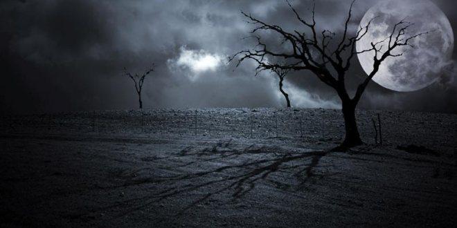 chants du cauchemar et de la nuit thomas ligotti udl