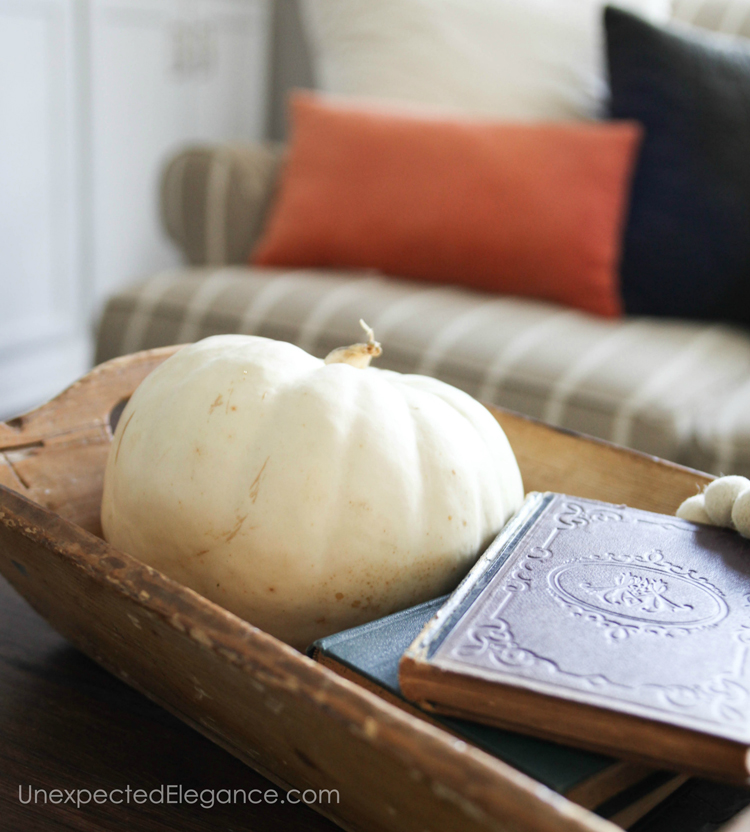 Pumpkins add an instant fall touch to any space.