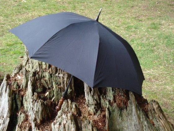 Unbreakable Umbrella Standing On A Stump