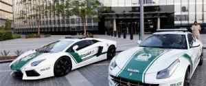 A Collection of the World's Coolest Police Cars