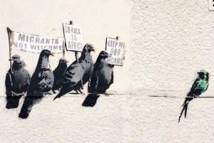 Banksy birds