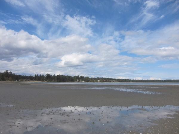 04 squelch beach