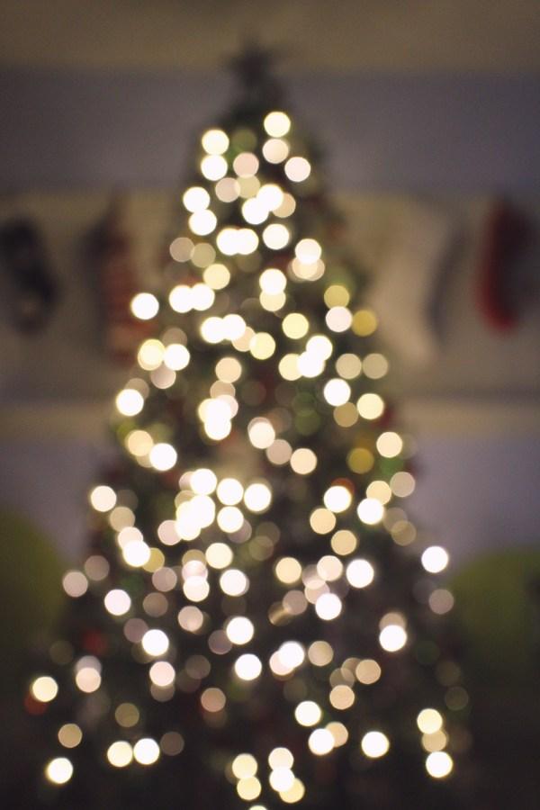 01 eve tree