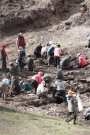 Minería artesanal Mongolia