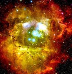 Rosette Nebula. Image credit: CFHT