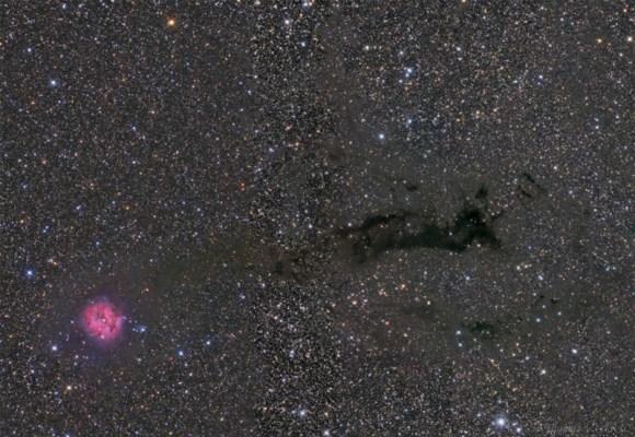 The Cocoon Nebula by Tom V. Davis