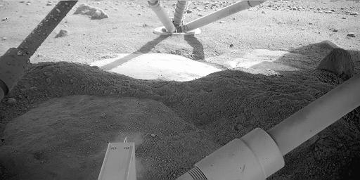 Sol 8 image from under the lander.  Credit:  NASA/JPL/Caltech/U of AZ