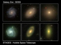 Images of three galaxies from the Galaxy Zoo (top) and STAGES surveys (bottom) show examples of how the newly discovered population of red spiral galaxies on the outskirts of crowded regions in the Universe may be a missing link in our understanding of galaxy evolution.