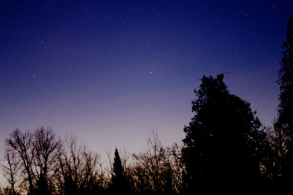 Comet ISON as seen from Ottawa, Canada on the morning of November 20th. (Credit: Andrew Symes/@FailedProtostar).