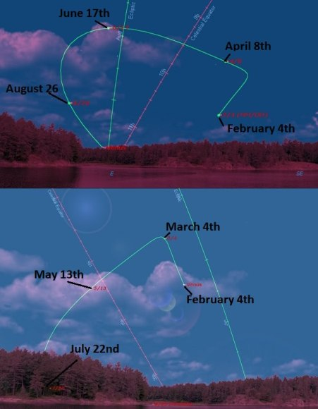 The path of Venus from February 4th to September 23rd, 2014. The first (top) graphic lays out the path as seen at dawn from latitude 30 degrees north, while the bottom lays out the path of Venus as seen from latitude 30 degrees south. Note that the orientation of the ecliptic in the top frame is set for September 23rd, while the bottom frame is set for February 4th, respectively. Created using Starry Night Education software.
