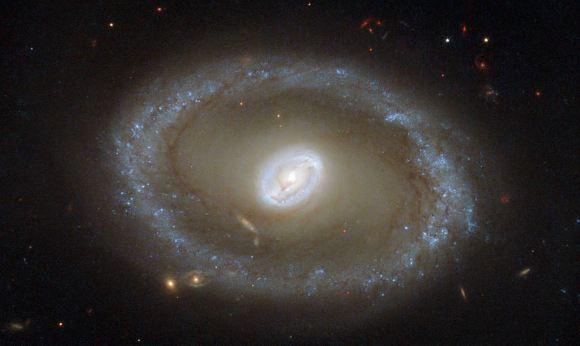 Hubble Space Telescope picture of galaxy NGC 3081. Credit: ESA/Hubble & NASA; acknowledgement: R. Buta (University of Alabama)