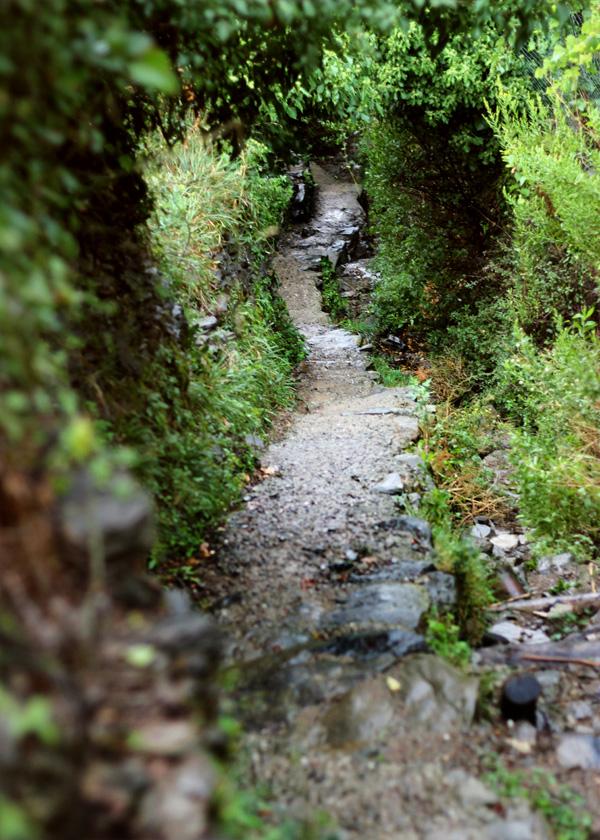 Cinque Terre, Italy | universityfoodie.com