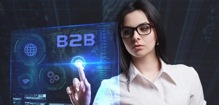 cliente b2b digital