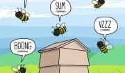 che verso fanno le api