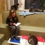 leggere ai gatti