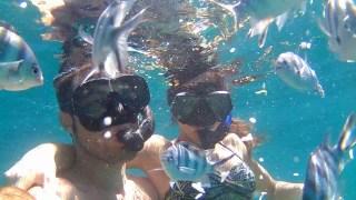 Snorkeling in Ko Tao