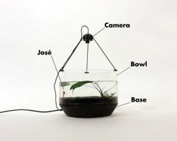 El acuario motorizado
