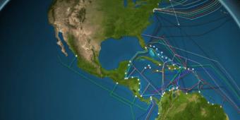Estos son los cables que nos conectan a todos a internet