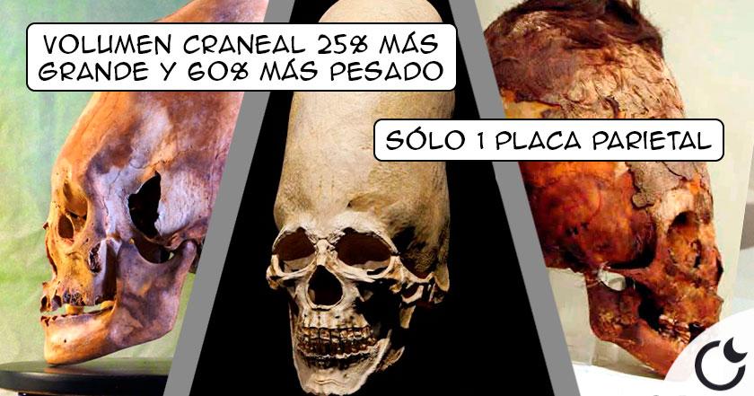 paracas2