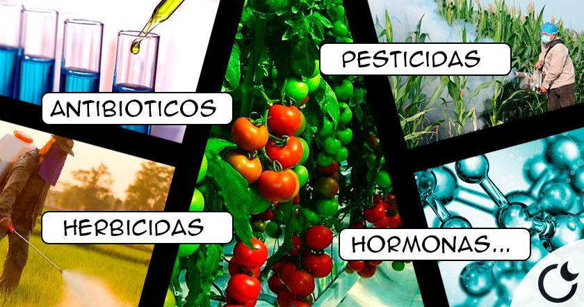 quimicos-verduras