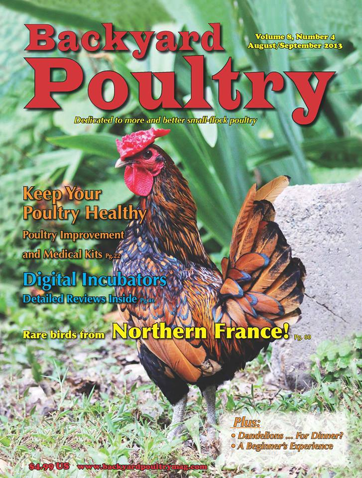 This is the cover of the August/September 2013 edition of Backyard Poultry  Magazine - Bragging Rights Upton Studios