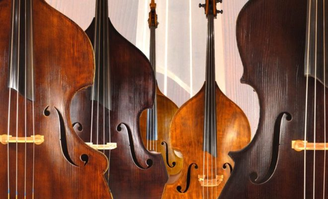 upton_bass_double_basses_4