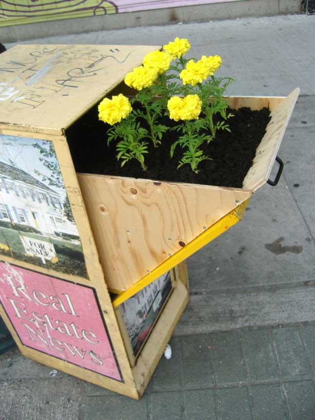 Toronto street artist and now guerrilla gardener, Posterchild, created this planted flyer box