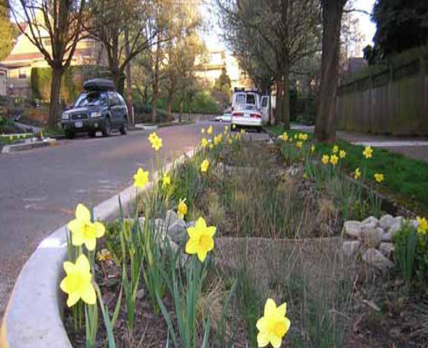 portland-green-streets-7