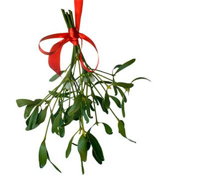 mistletoe-sprig1
