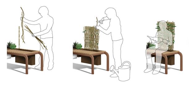 vegetalis-diagram