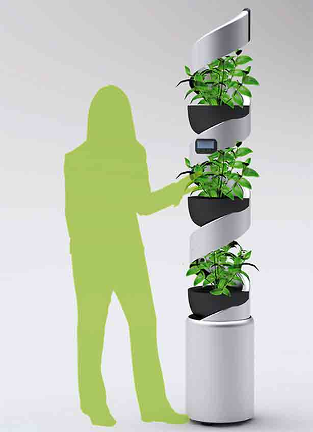 hydroponic-vertical-with-person
