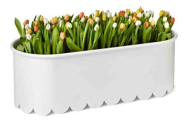 nola-scalloped-planter