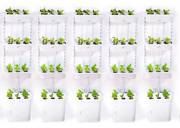 Eliooo-vertical-gardens-multiples